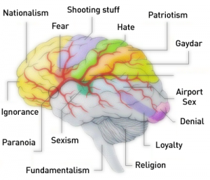 The Science of the Conservative Brain: Fearful and Closed Minded!